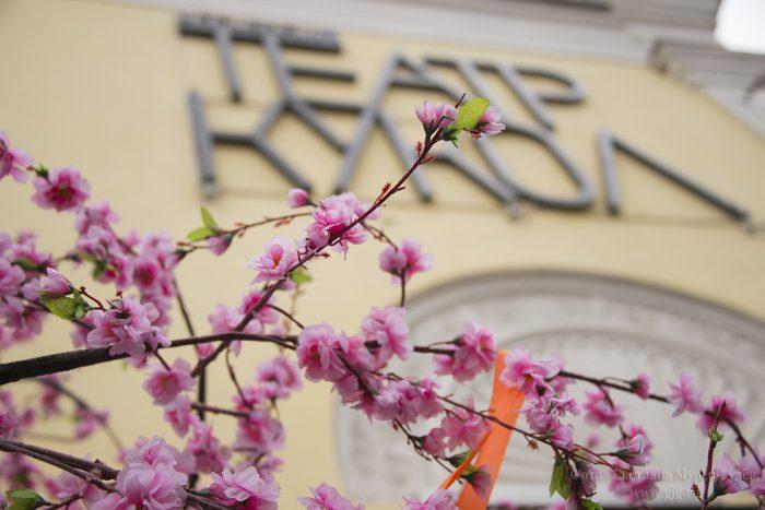 ФОТОГРАФИЯ: «Черешневый лес» и премьера спектакля «Огниво» в Московском театре кукол